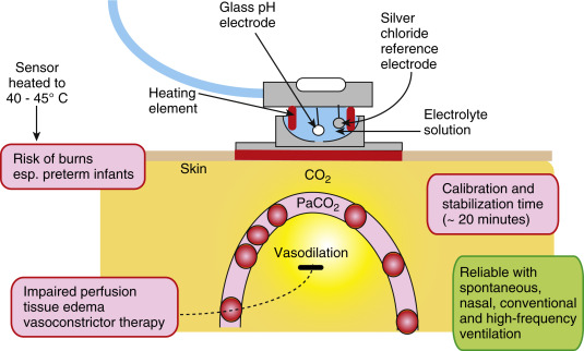 ph electrode an overview sciencedirect topicssign in to download full size image