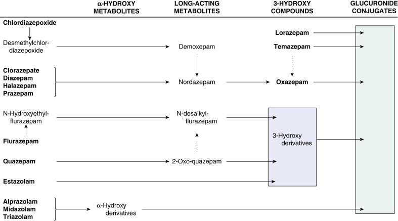 Prazepam - an overview | ScienceDirect Topics