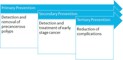 Colorectal Cancer Screening And Surveillance Sciencedirect