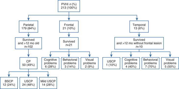 Preterm Intraventricular Hemorrhage/Posthemorrhagic Hydrocephalus