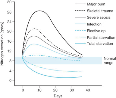 Nutritional Needs and Support for the Burned Patient