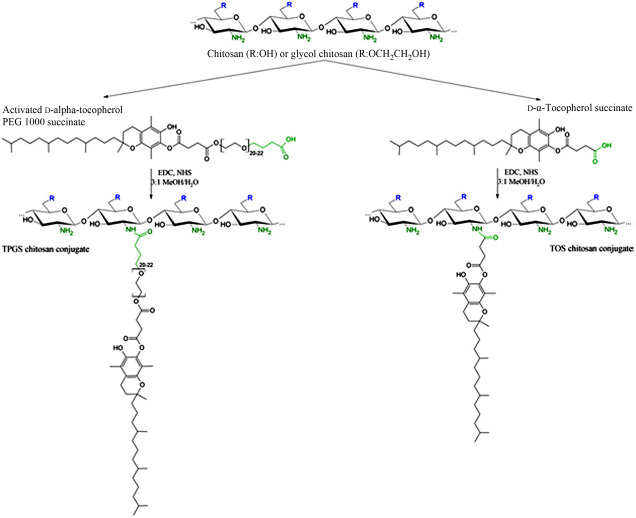 Tocol - an overview   ScienceDirect Topics