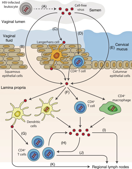 Nanotechnologies for early diagnosis, in situ disease monitoring