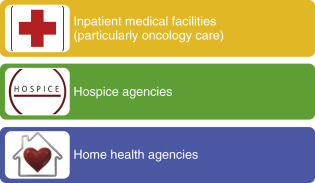 Hospice Care - an overview | ScienceDirect Topics