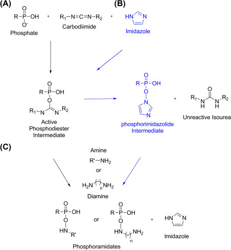 Amines - an overview | ScienceDirect Topics