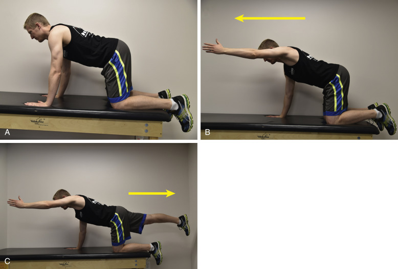 Closed Kinetic Chain Exercise - an overview | ScienceDirect