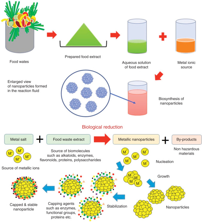 Biological synthesis of nanoparticles: an environmentally