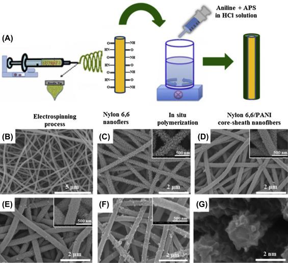 Electrospun Nanofiber Electrodes: A Promising Platform for