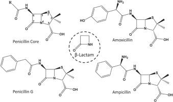 Antimicrobials in Pediatric Dentistry - ScienceDirect