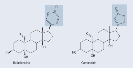 when are cardiac glycosides used
