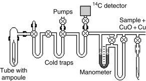Ampoule - an overview | ScienceDirect Topics