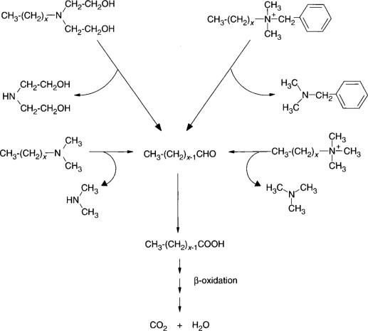 Quaternary Ammonium Salt - an overview | ScienceDirect Topics