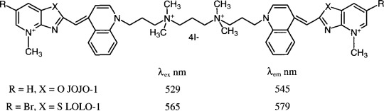 Cyanine dyes as fluorescent non-covalent labels for nucleic