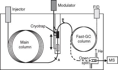 Two Diional Gas Chromatography - an overview ... on