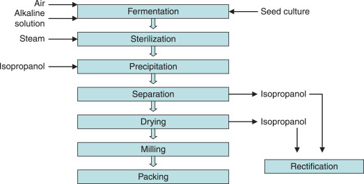 Xanthan Gum - an overview | ScienceDirect Topics | Xanthan Gum Process Flow Diagram |  | ScienceDirect