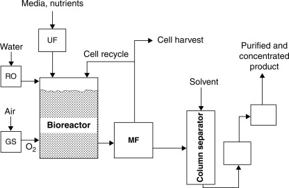 bioprocessing - an overview | sciencedirect topics  sciencedirect.com