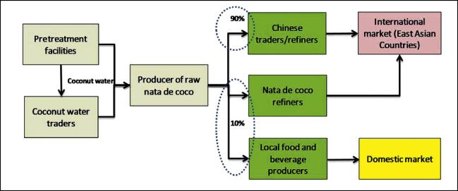 Nata de coco Industry in Vietnam, Thailand, and Indonesia