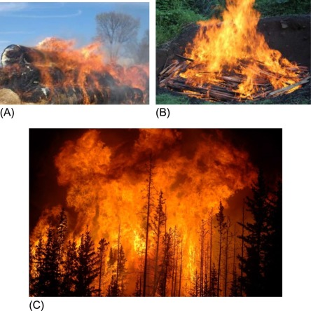 Spontaneous Combustion - an overview | ScienceDirect Topics