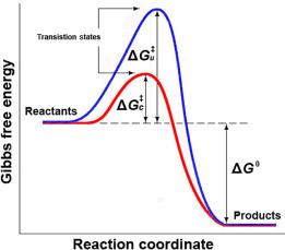 activation gibbs energy