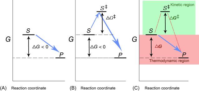 Thermodynamics Of Enzyme Catalyzed Reactions Sciencedirect