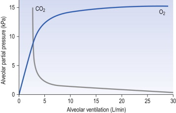 Alveolar Gas Equation - an overview | ScienceDirect Topics