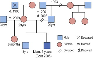 Psychiatric History - an overview | ScienceDirect Topics