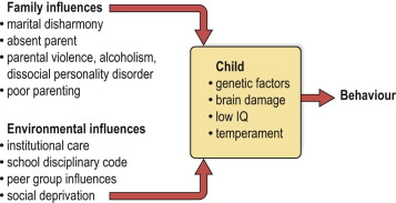 Conduct Disorder - an overview | ScienceDirect Topics