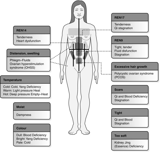 Pulse Diagnosis - an overview | ScienceDirect Topics