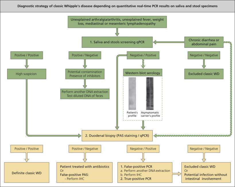 Liquid Feces - an overview | ScienceDirect Topics