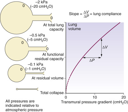 Transmural Pressure An Overview Sciencedirect Topics
