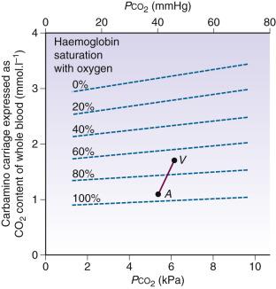 Haldane Effect - an overview   ScienceDirect Topics