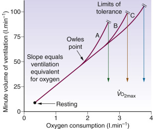 how to measure overall rate of cellular respiration