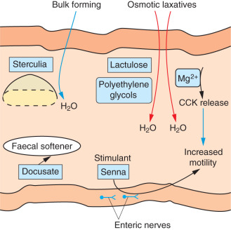 Laxative - an overview | ScienceDirect Topics