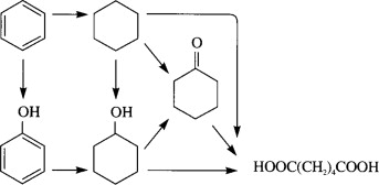 preparation of adipic acid from cyclohexanone using kmno4