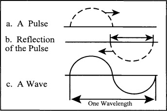 Transverse Wave - an overview | ScienceDirect Topics
