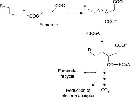 Petroleum Derivative - an overview | ScienceDirect Topics