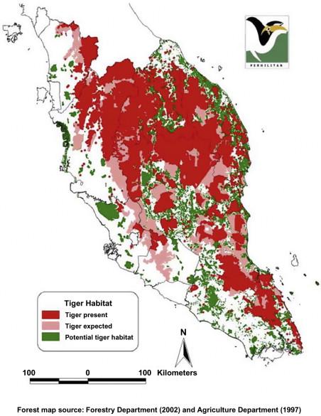 The Malayan Tiger - ScienceDirect on amur tiger map, sumatran tiger map, dhole map, african tiger map, indochinese tiger map, chinese tiger map, caspian tiger map, tiger habitat map, golden tiger map, south china tiger map, malayn tiger map, asiatic cheetah map,
