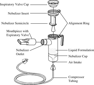 nebulizer an overview sciencedirect topics Diagram of Chewing Gum sign in to download full size image