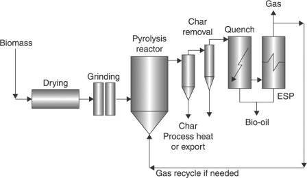 Fast pyrolysis of biomass for the production of liquids