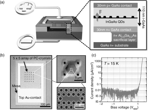 Luminescence spectra of quantum dots in microcavities