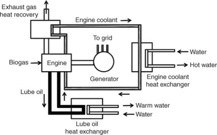 Generation of heat and power from biogas for stationary applications