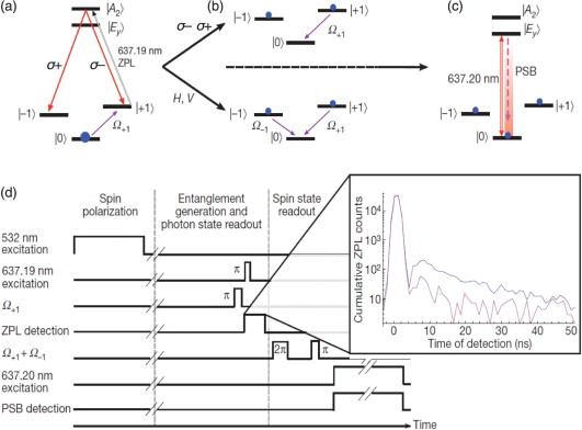 Spin–photon entanglement in diamond for quantum optical networks