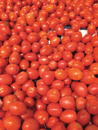 Canned Tomato Products Sciencedirect