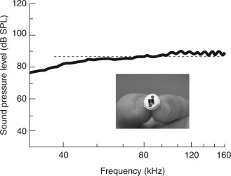 Anechoic Chambers - an overview | ScienceDirect Topics