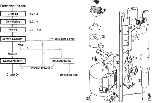 The Extraction Of Vegetable Oils Sciencedirect
