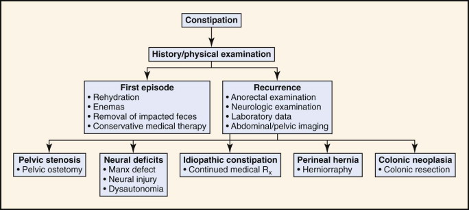 Constipation - an overview   ScienceDirect Topics