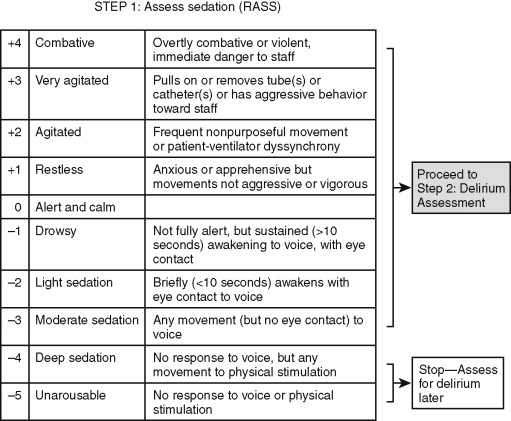 Ramsay Sedation Scale - an overview | ScienceDirect Topics