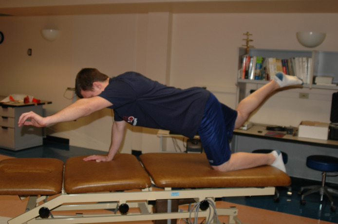 Hip Adductors - an overview | ScienceDirect Topics