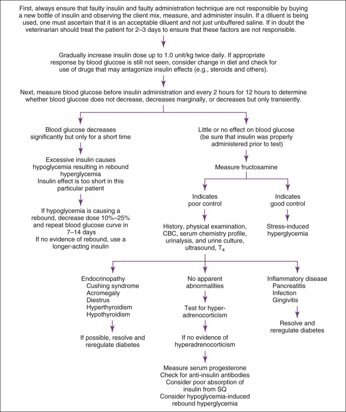 Hyperglycemia - an overview | ScienceDirect Topics