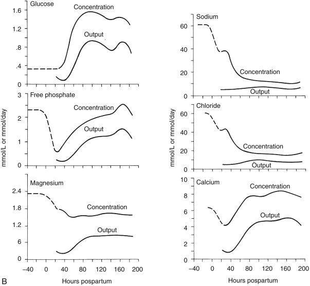 Potassium Chloride - an overview   ScienceDirect Topics
